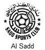 Al Sadd Arenascore