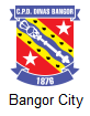 Bagor City Arenascore
