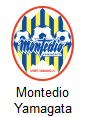 Montedio Yamagata Arenascore