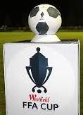 FFA Westfield 2014 Australia Arenascore