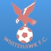 Whitehawk FC Arenascore