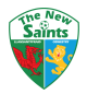 The New Saints arenascore