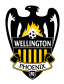Wellington Phoenix Arenascore