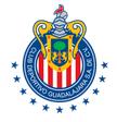 Guadalajara arenascore