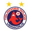 Veracruz arenascore