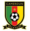Cameroon arenascore