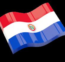 PARAGUAY PRIMERA DIVISION 2015 arenascore