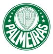 Palmeiras U20 arenascore