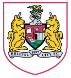 Bristol City FC Arenascore
