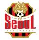 Seoul Arenascore