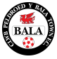Bala Town Arenascore