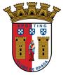 Sporting Braga Arenascore