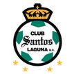 Santos Laguna arenascore