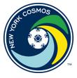 NY Cosmos arenascore