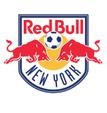 New York RB arenascore